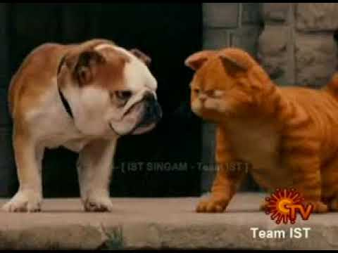 Garfield Tamil Movie Download Hd Lasopatao